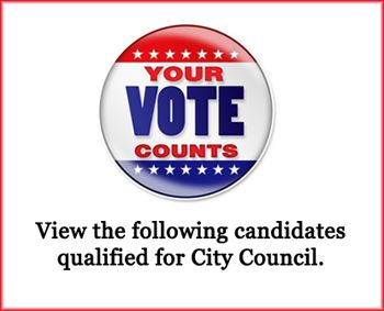 Vote City Council Banner