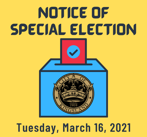 Special Election 587x548